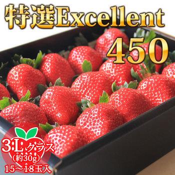 ex-450-1.jpg